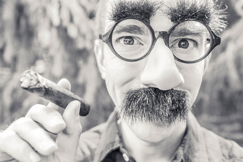 5-steps-for-growing-the-ultimate-moustache-this-movember-mister-chopshop